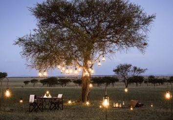 Under Serengeti Skies