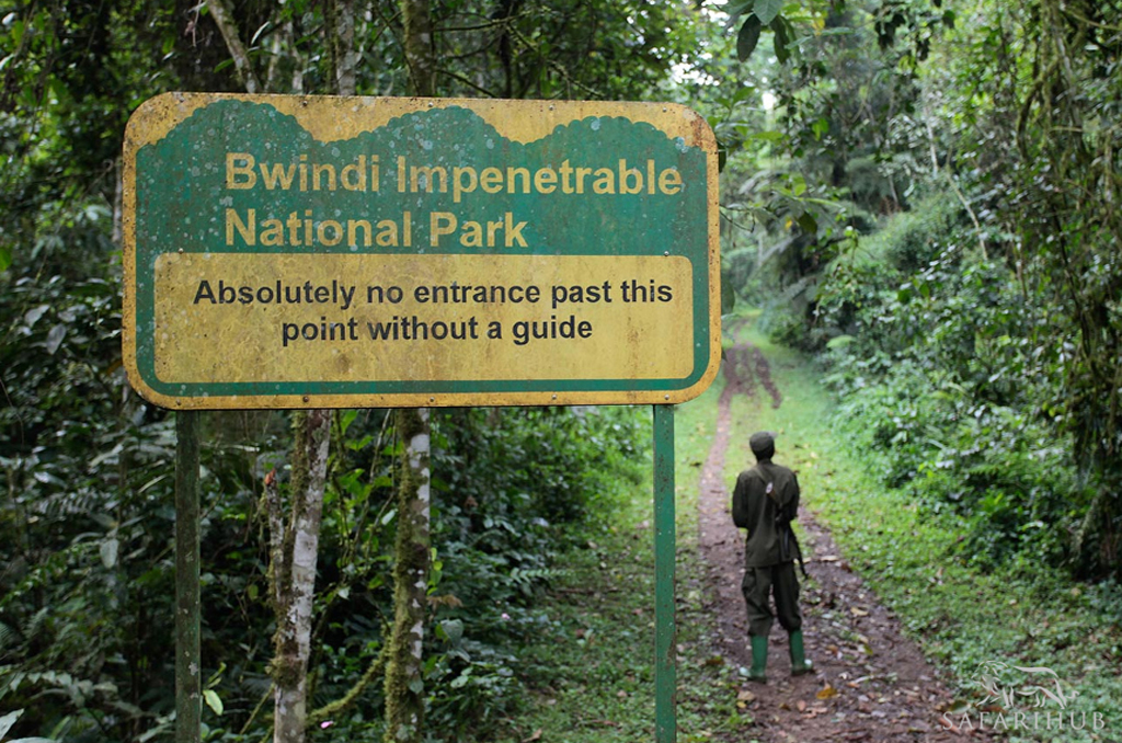 Queen Elizabeth National Park - Bwindi Impenetrable Forest