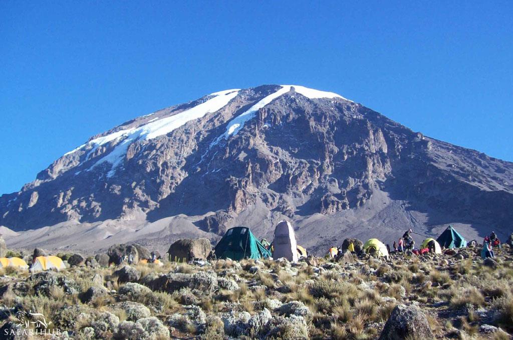 Barranco Camp (3,850m/12,600ft) to Karranga Camp (3,950m/13,000ft) via the Barranco Wall (4,200m/13,800ft)