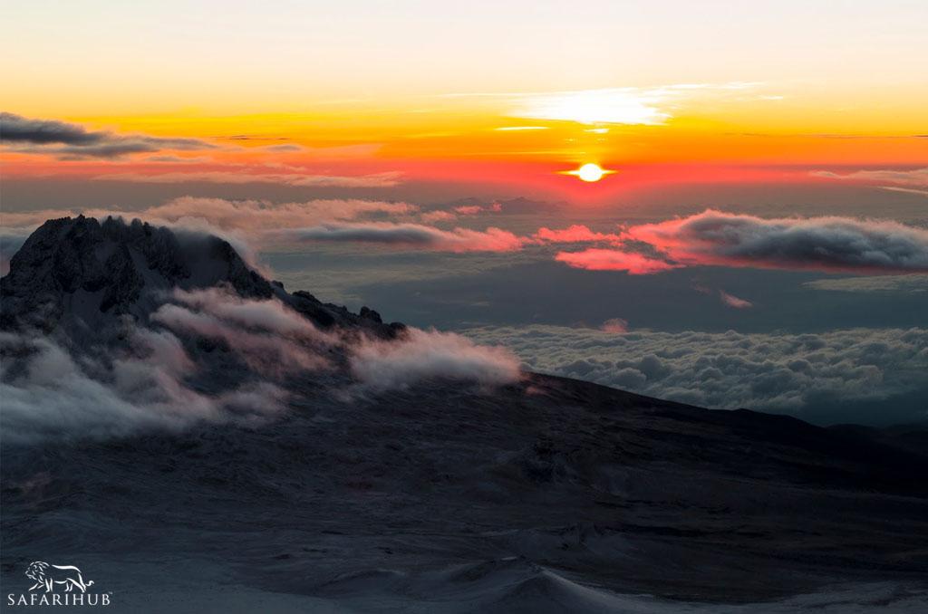 Mweka Camp (3,110m/10,200ft) to Mweka Gate (1,830m/6,000ft)