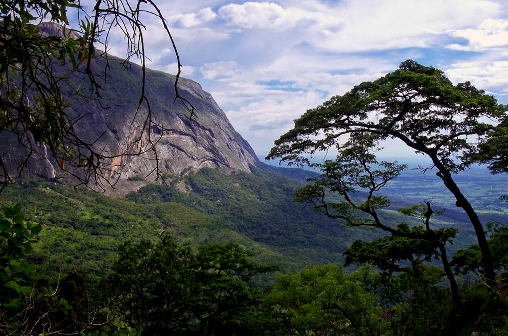 Explore Luwawa and the Viphya forest