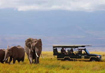 Elewana SkySafari – Classic Kenya