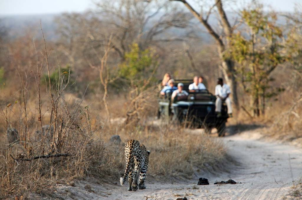 Johannesburg to Kruger National Park