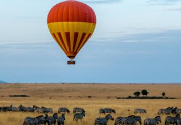 Kenya Safaris