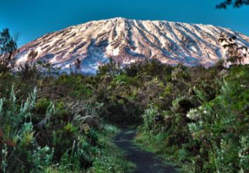 Climbing Mount Kilimanjaro – The Lemosho Route