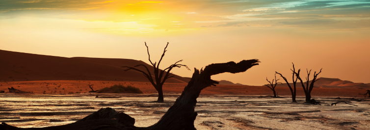 Stunning scenery - Amazing Facts About Namib Desert