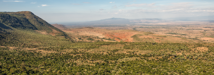 African Safari Under $1500