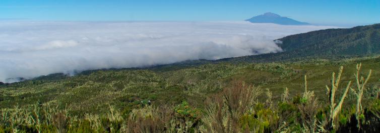 Machame Route - 5 Best Trekking Tours in Mt. Kilimanjaro