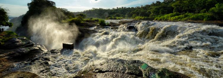 Best of Uganda Safari - 7 Best Uganda Safari Tour Packages