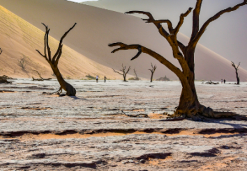 5 Best Safari Lodges & Camps To Stay Around Sossusvlei Namibia